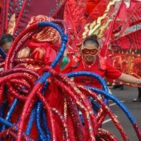 Boy in red costume decorated with long pipes of blue and red, he is and wearing a gold mask Rear view of a red costume decorated with long pipes of blue and red