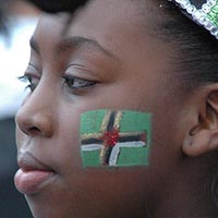 Close-up of a member of Elimu dressed in black with green and silver details and a green and silver sparkling headdress, got a green flag with a white and red cross in the middle of it, painted on the cheek, looking in the distance.