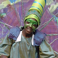 Photograph of carnival dancer in green costume with headdress and wings.