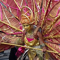 Photo of a woman in a gold costume, with a backpack supporting orange and gold wings.