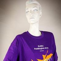 "Photo of Elimu T-shirt on a mannequin. The T-shirt is purple and has a yellow logo entitled ""DiverCity"" on the front."