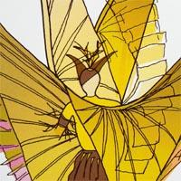 design drawing of man wearing costume with long yellow, brown and pink wings